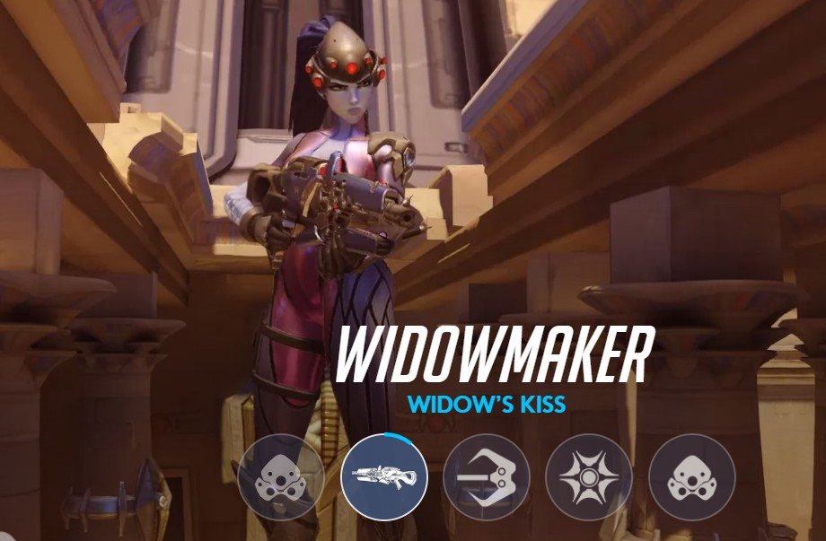 Pro Widowmaker Settings